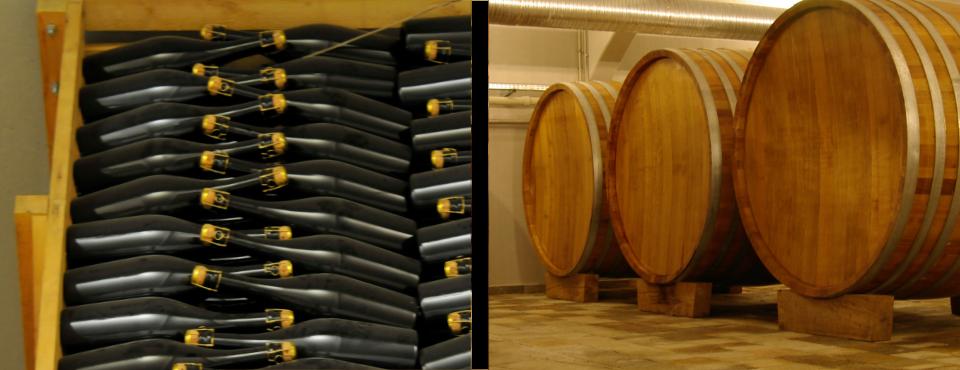 Moriglio Flaschen und Fasskeller
